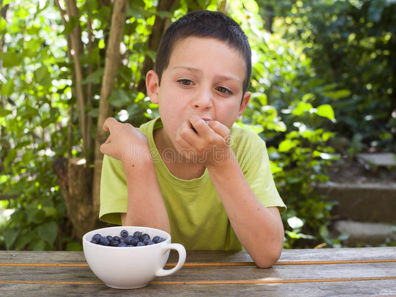 Child eating fresh blueberries royalty free stock photo