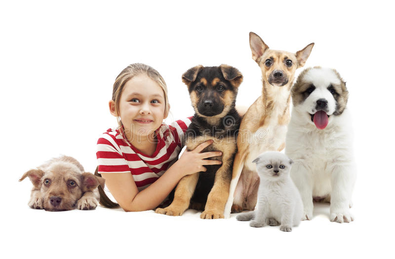 Child embracing puppies royalty free stock image