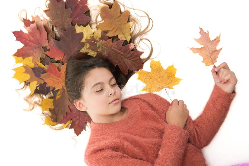 Child enjoy fall season. Girl cute kid long hair lay on white background with fallen leaves. Dry maple leaves in stock image