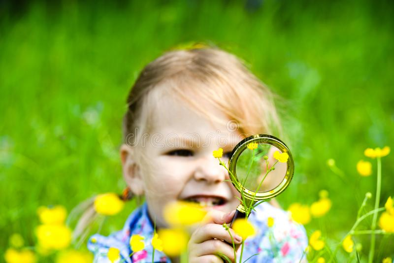 The child explores the grass in the meadow through a magnifying glass. Little girl exploring the flower through the magnifying royalty free stock photos