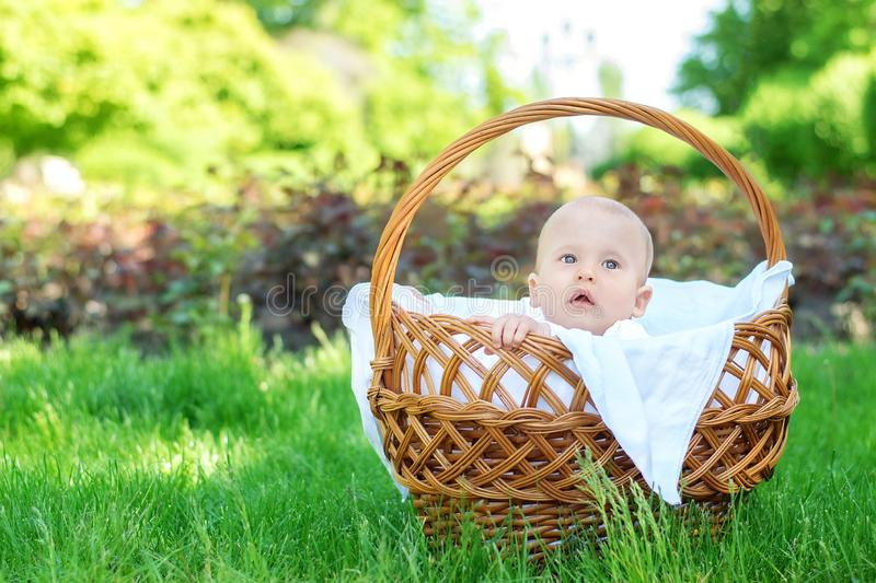 Child exploring the world: blond baby with surprised face sitting in a wicker basket on picnic and observing the place royalty free stock images