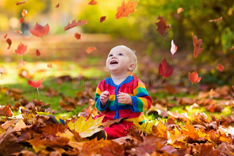 Child in fall park. Kid with autumn leaves. royalty free stock photography