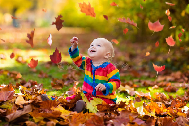 Child in fall park. Kid with autumn leaves. royalty free stock photo
