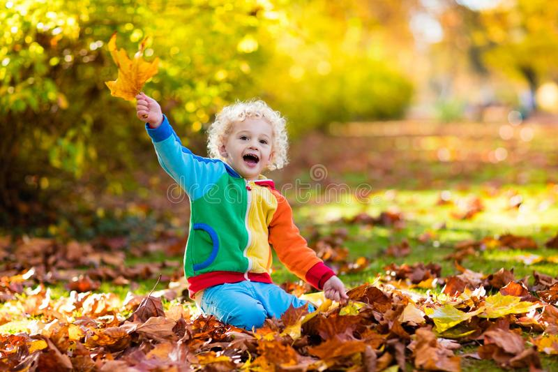 Child in fall park. Kid with autumn leaves. Kids play in autumn park. Children throwing yellow and red leaves. Little boy with oak and maple leaf. Fall foliage stock image