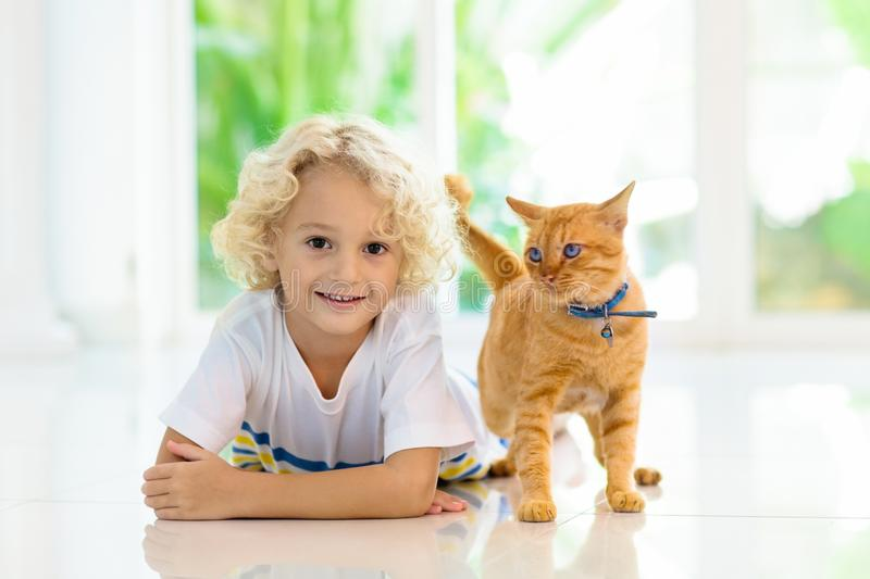 Child feeding home cat. Kids and pets. Child feeding cat at home. Kid and pet. Little blond curly boy playing with kitten in white kitchen at window. Domestic royalty free stock photography