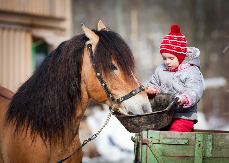 Child feeding a horse in winter. Child feeding a horse, sitting on a cart in the winter stock photos