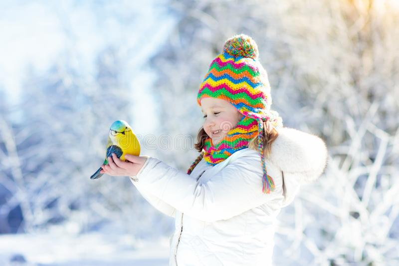Child feeding bird in winter park. Kids play in snow. Nature and. Child feeding tit bird in winter park. Kids feed birds in snowy forest. Little girl with royalty free stock images