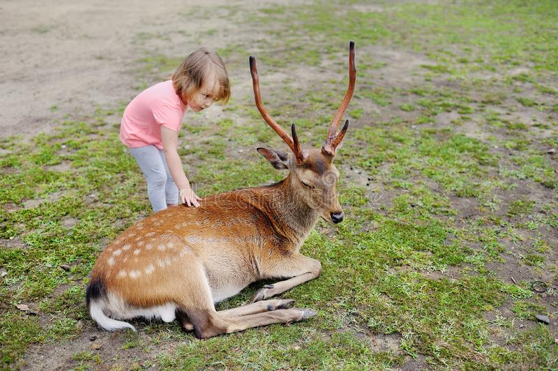 Child feeding wild deer at petting zoo. Kids feed animals at outdoor safari park. Kid and pet animal. stock images