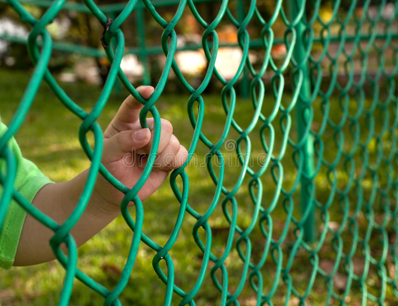 Download Child finger on fence stock photo. Image of fence, child - 23333180