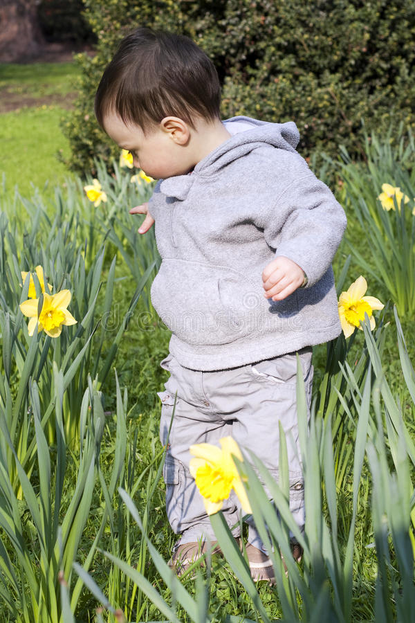 Download Child flower garden stock image. Image of natural, flowers - 23100739