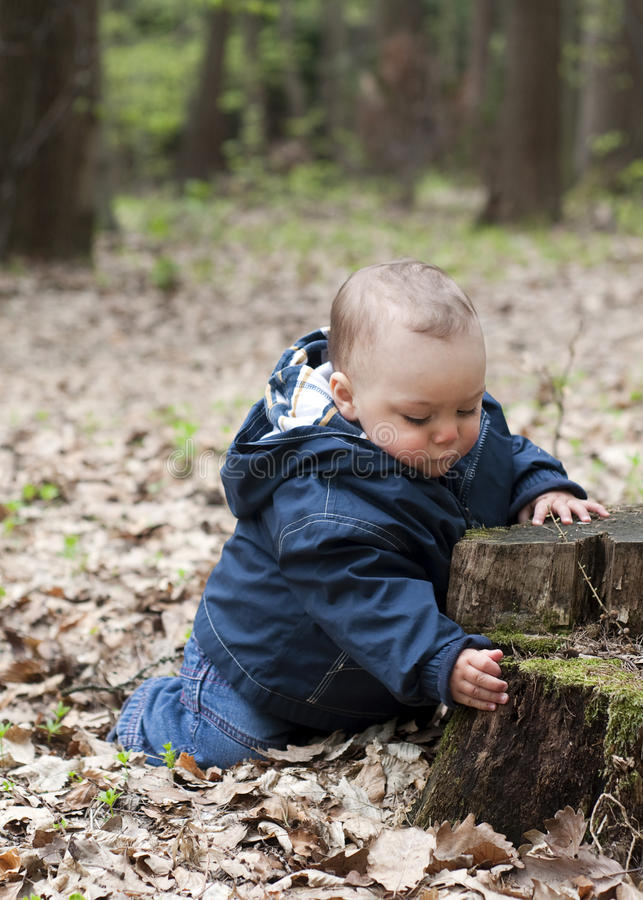 Download Child in forest stock image. Image of learning, infant - 24482455