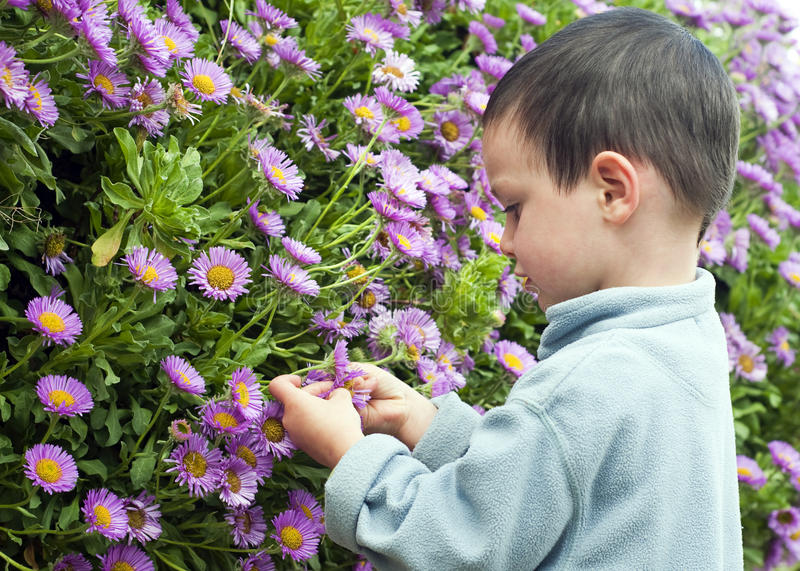 Download Child in the garden stock image. Image of purple, profile - 25969499