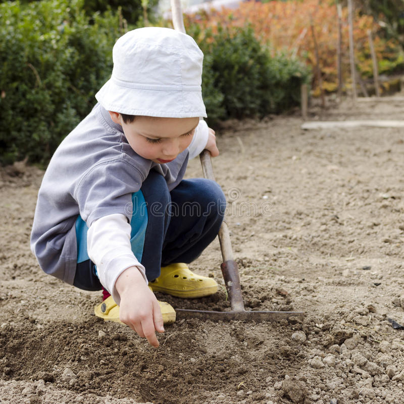 Child gardening stock photos