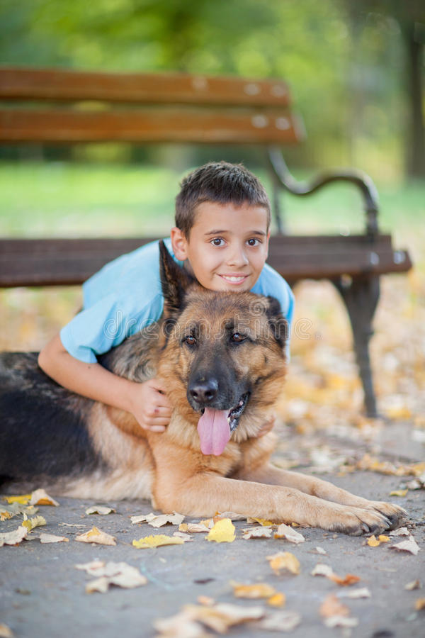 Child with a German Shepherd Dog in the park stock photo