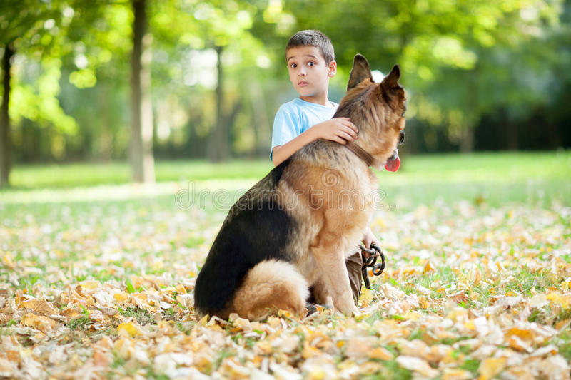 Child with a German Shepherd Dog in the park. Young boy with dog in park stock photography