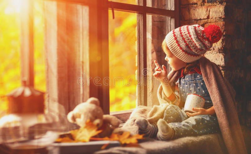 Child girl with cup tea looking through window at nature autumn. Child girl with cup tea looking through the window at the beautiful nature autumn gold royalty free stock image