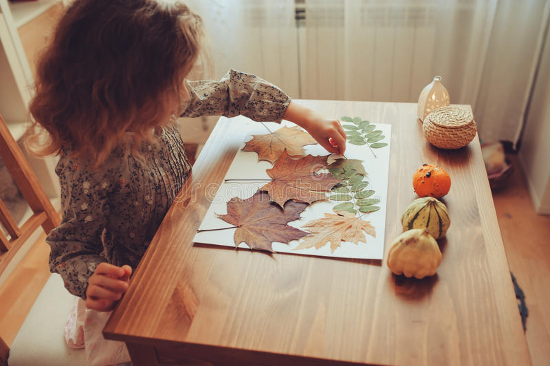 Child girl making herbarium from dried leaves at home, nature art and craft. Preparations for autumn craft with kids. Herbarium from dried leaves. Learning royalty free stock image