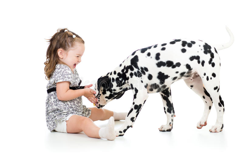 Child girl playing puppy dog. Child playing puppy dog isolated on white royalty free stock photos