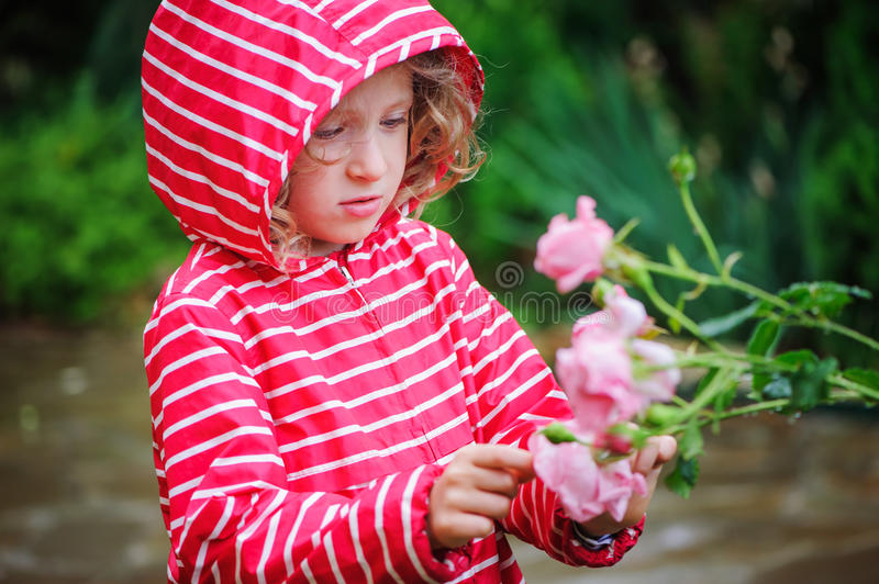 Child girl in red striped raincoat playing with wet roses in rainy summer garden. Nature care concept. stock photo