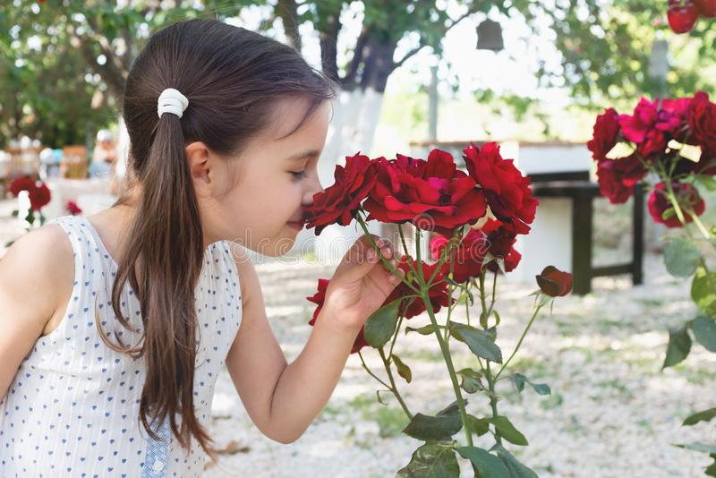 Child Girl Smelling Flowers in the Garden in Summer stock images