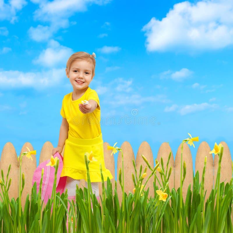 Child giving flower sky blue summer garden royalty free stock photo
