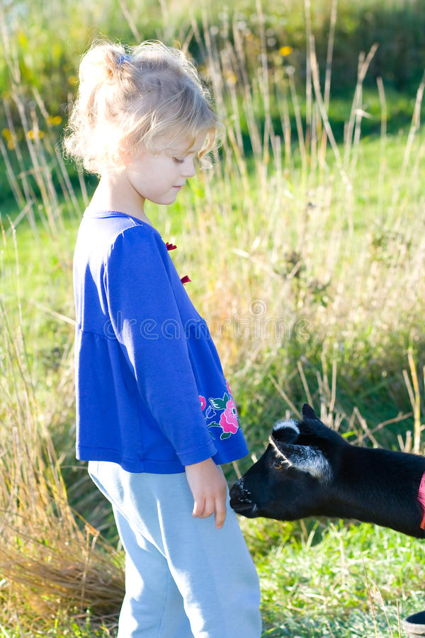 Download Child and goat. stock image. Image of farm, greeting - 11177603
