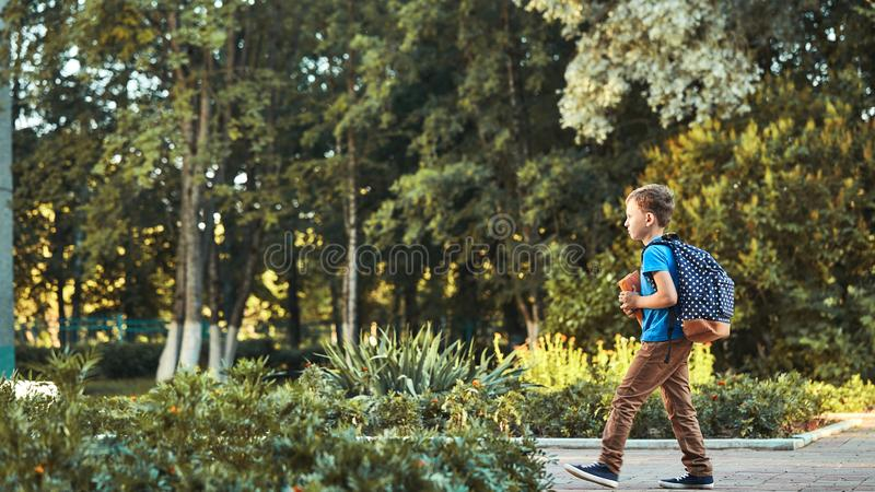 The child goes to school. boy schoolboy goes to school in the morning. happy child with a briefcase on his back and textbooks in. His hands walks to school royalty free stock photos
