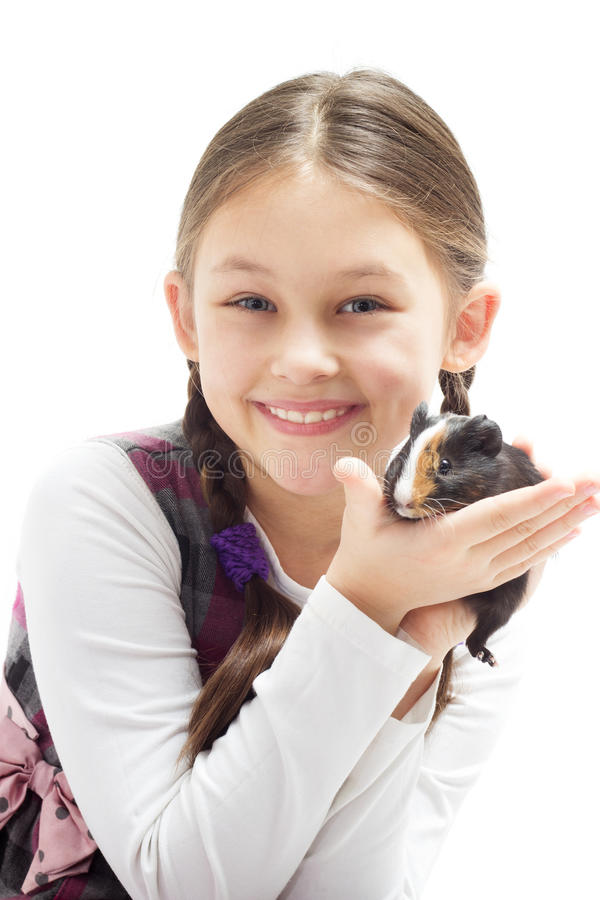 Child and guinea pig stock images