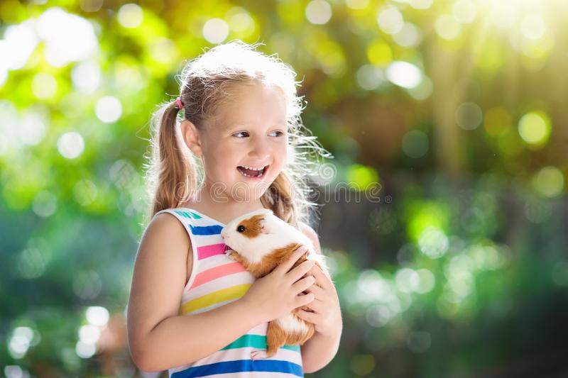 Child with guinea pig. Cavy animal. Kids and pets. stock photo