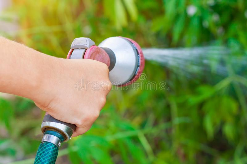 Child hand with sprinkler, watering a garden on a background of green plants in bokeh stock photography