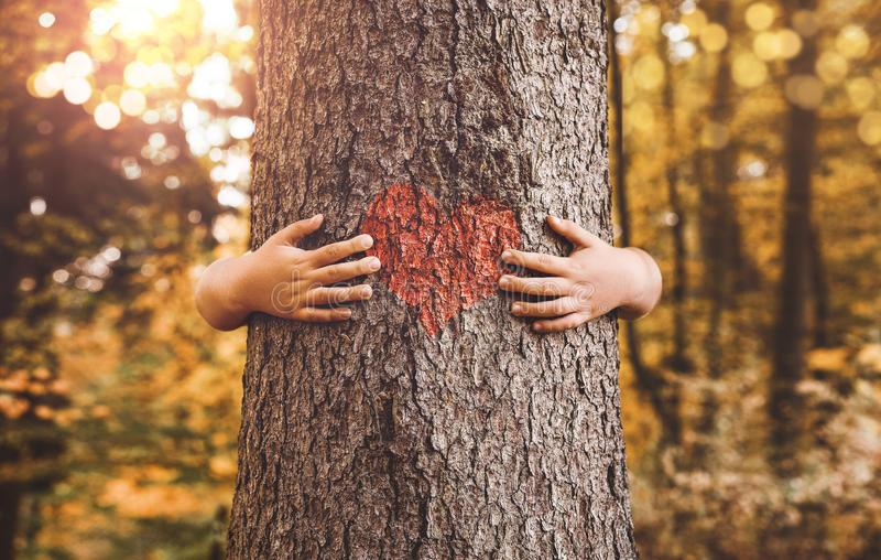 Child hands hugging tree. Nature lover, close up of child hands hugging tree with copy space royalty free stock image