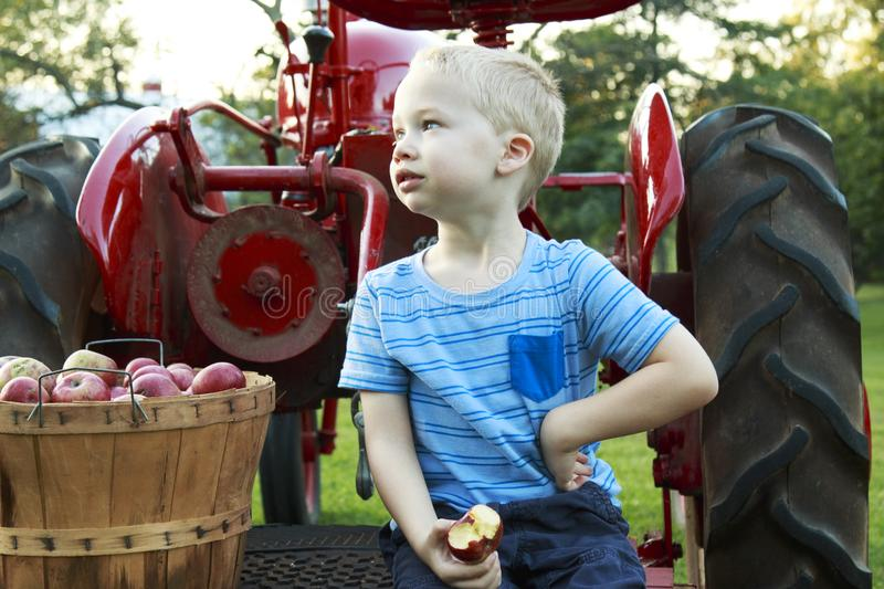 Child having fun apple picking and sitting on a red antique tractor royalty free stock photo