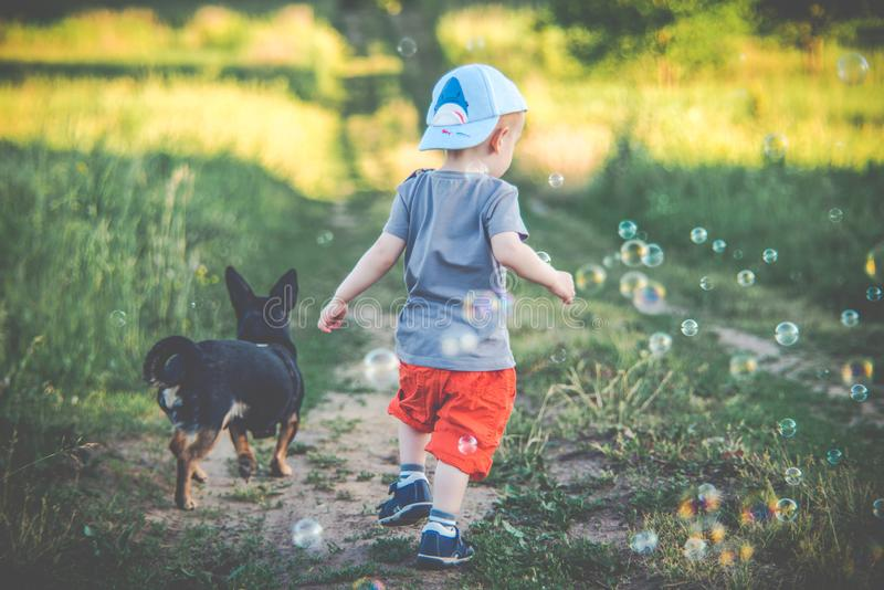 Boy and dog, two friends stock photo