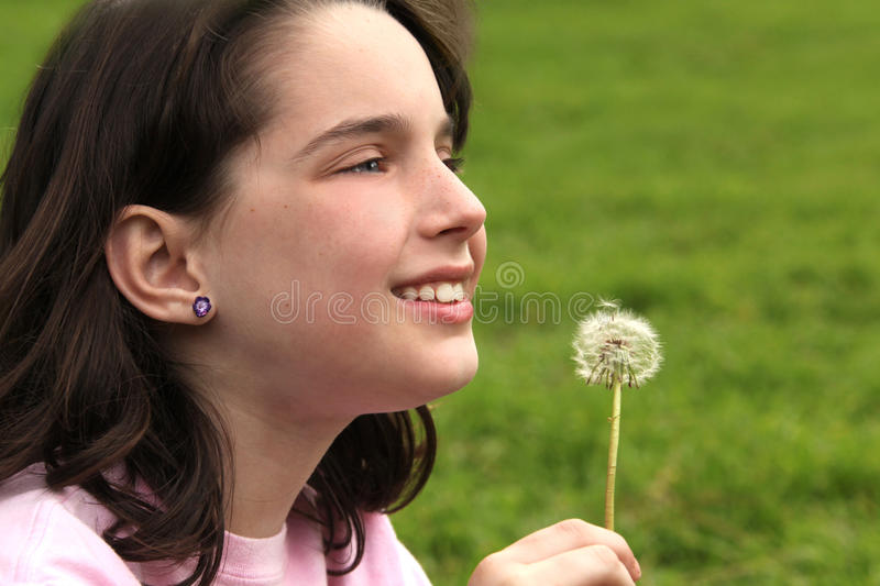 Download Child Holding Dandilion Looking Up Stock Photos - Image: 10622063