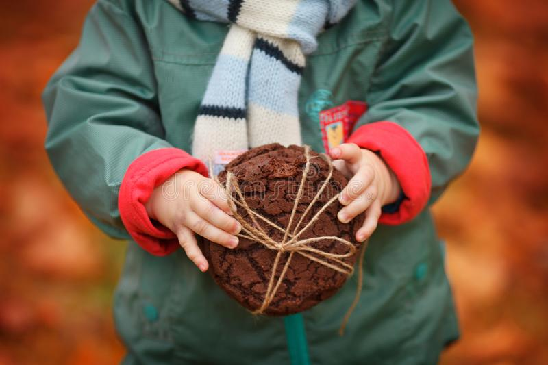 Child holding Oatmeal cookies  in hands. Close up photo of delicious and crunchy oatmeal cookies on autumn background. Baking is stock images