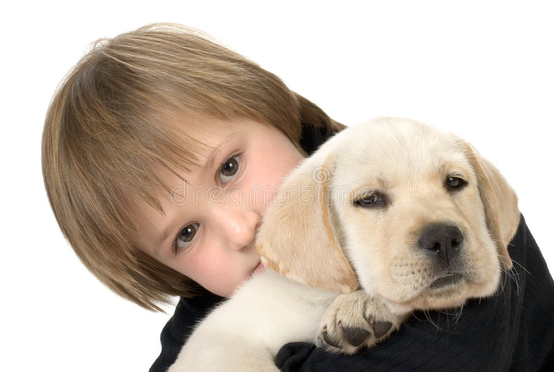 Child holding puppy stock photo