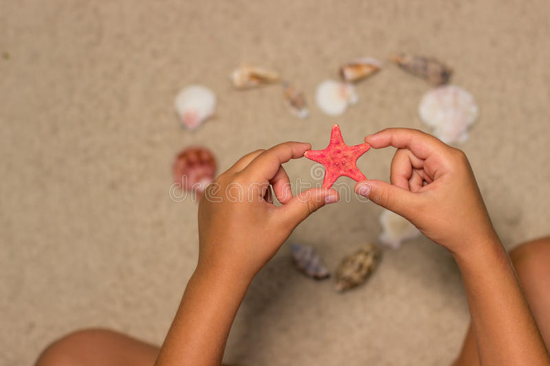 Child holds red starfish. Child hands with starfish. Sea shells on sandy beach. Summer background. Top view stock photography