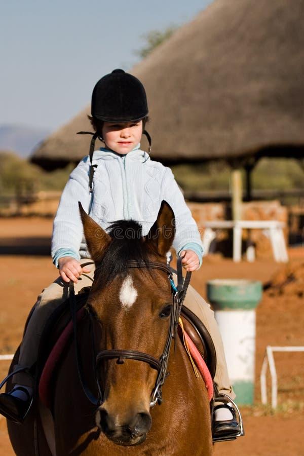 Child on horse royalty free stock image