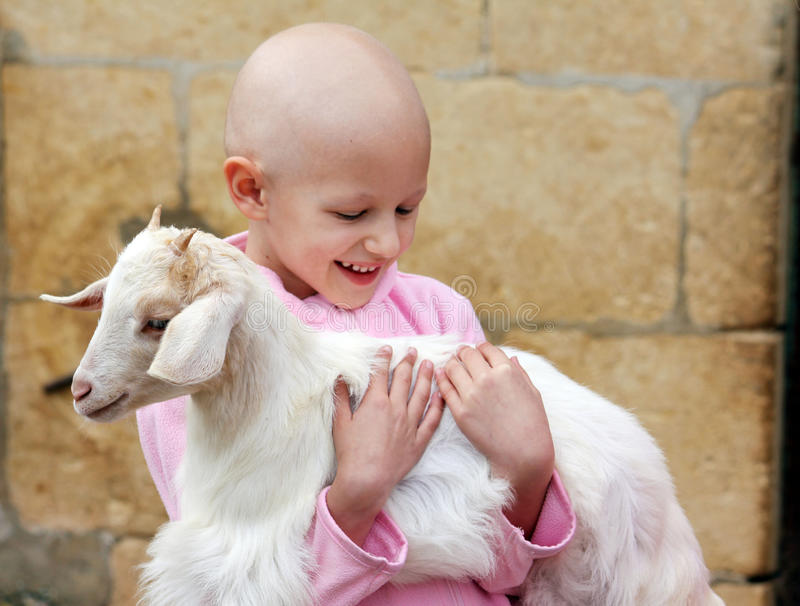 Child hugging goat stock photos