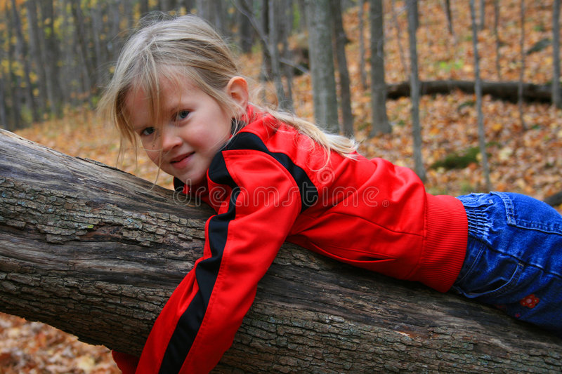 Child hugging a tree. stock images
