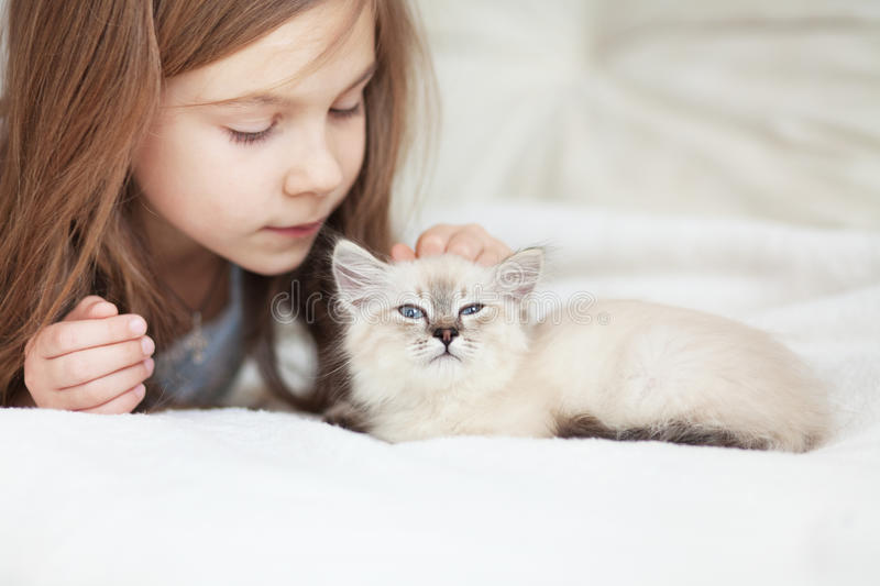Child and kitten stock images