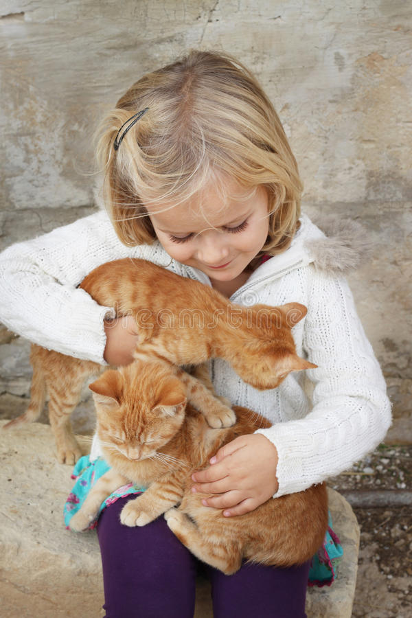 Child with kittens stock photo