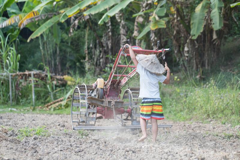 Child labor, Poor children driving a plow farming area, Children. Have to work because of poverty, Agriculture, World Day Against Child Labour concept stock photos