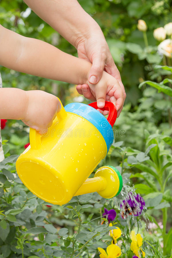 Child learns to water the flowers royalty free stock image