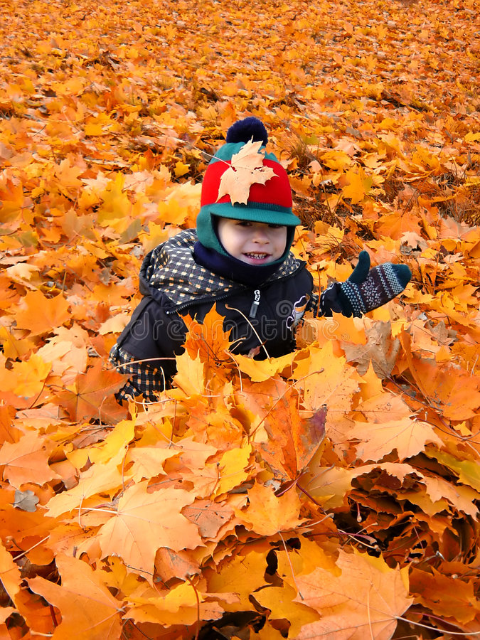 Download Child In The Leaves Royalty Free Stock Images - Image: 282639