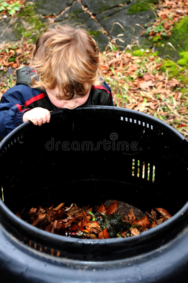 Child looking in compost bin stock photo
