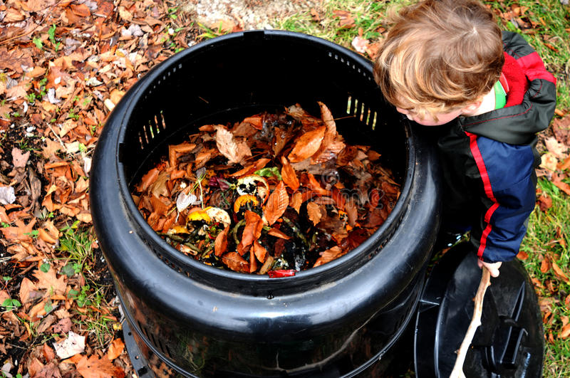 Child looking in compost bin. Young child investigates backyard compost bin in autumn royalty free stock photography