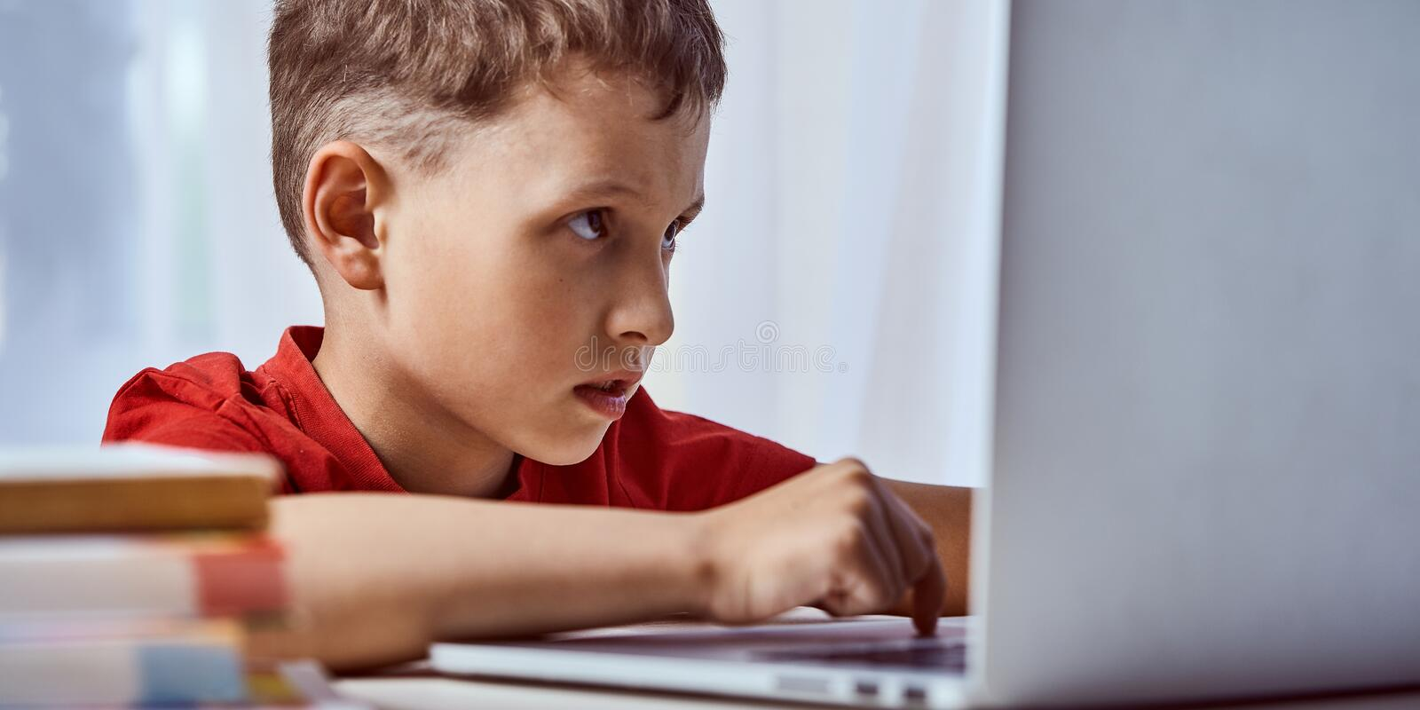 Child is looking for information on the Internet through a laptop. self-study at home, doing homework. Intently reading the stock photos
