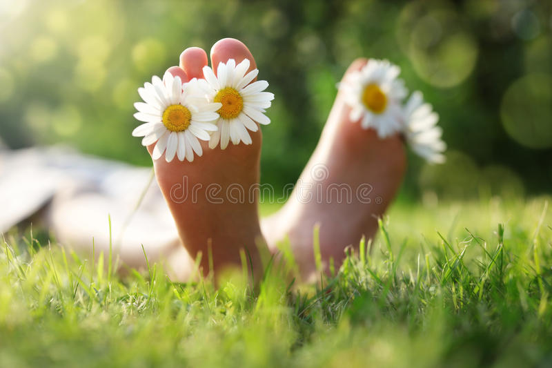 Child lying in meadow relaxing in summer sunshine. Child with daisy between toes lying in meadow relaxing in summer sunshine stock photos