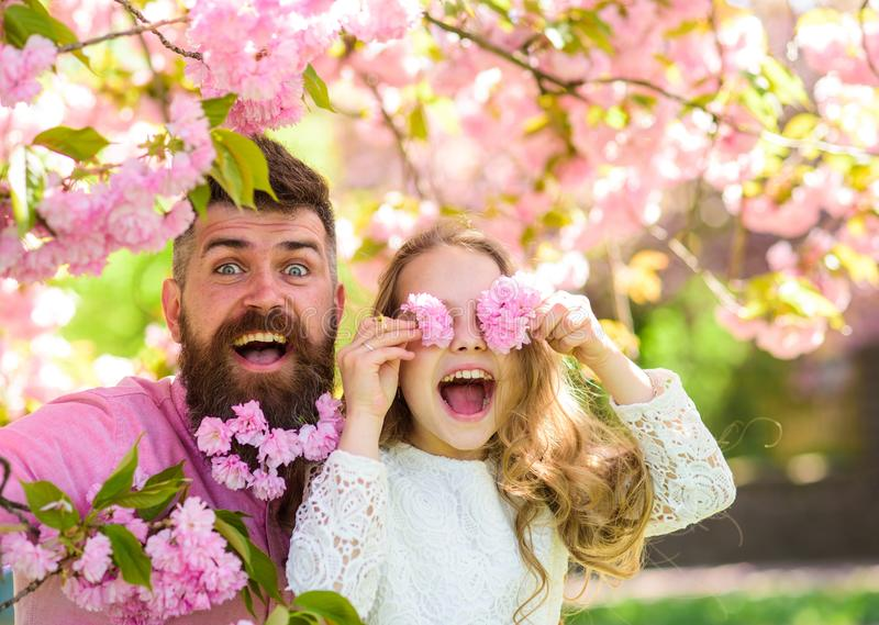 Child and man with tender pink flowers in beard. Father and daughter on happy face play with flowers as glasses, sakura stock photos